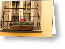 Italian Window Box Greeting Card