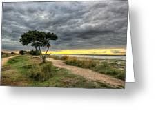 Itchenor West Sussex Hdr Greeting Card