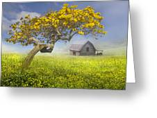 It's A Beautiful Day Greeting Card by Debra and Dave Vanderlaan