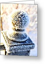 It's A Bit Nippy Out Greeting Card