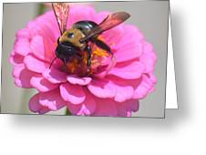 It's Mine Said The Bee Greeting Card