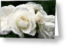 Ivory Rose Bouquet Greeting Card by Jennie Marie Schell