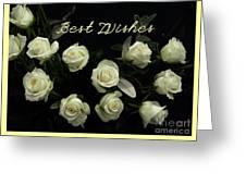 Ivory Roses Greeting  Greeting Card