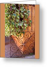 Ivy And Old Iron Gate Greeting Card