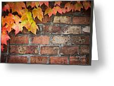 Ivy Over Brick Wall Greeting Card