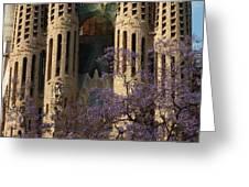 Jacaranda In Barcelona Greeting Card by Christine Burdine