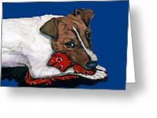 Jack Russell With A Red Bandana Greeting Card