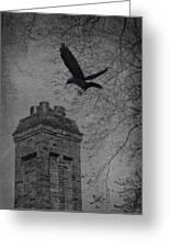 Jackdaw Flying To Chimney Greeting Card