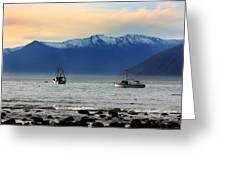Jackson Bay South Westland New Zealand Greeting Card