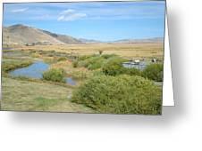 Jackson Hole Wyoming Greeting Card