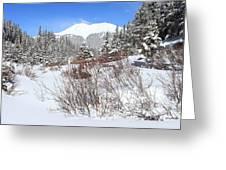 Jacque Peak Greeting Card