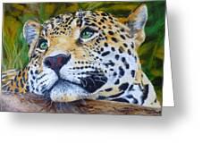 Jaguar Big Cat Original Oil Painting Hand Painted 8 X 10 By Pigatopia Greeting Card