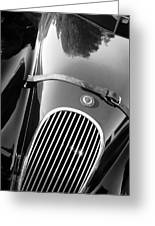 Jaguar Hood Emblem - Grille Greeting Card by Jill Reger