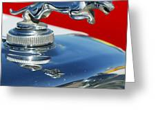 Jaguar Hood Ornament 2 Greeting Card