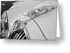 Jaguar Hood Ornament In Black And White Greeting Card