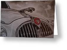 Jaguar Mk II Bonnet Greeting Card