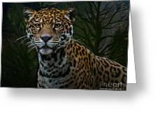 Jaguar Two Greeting Card