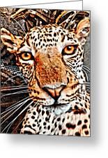 Jaguareyes Greeting Card