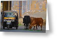 Jaipur Greeting Card