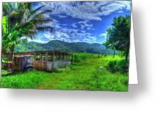 Jamaican Sky Greeting Card