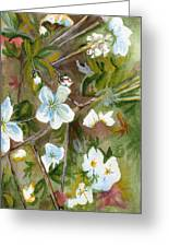 Jane's Apple Blossoms 1 Greeting Card