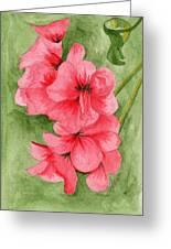 Jane's Flowers Greeting Card