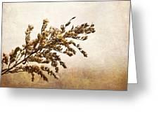Janice Joplin Greeting Card