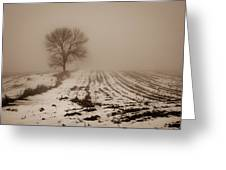 January Fog Greeting Card