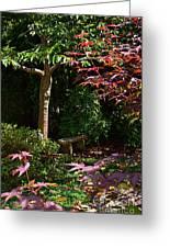 Japanese Garden Bench Greeting Card