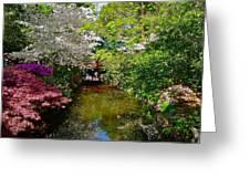 Japanese Garden In Bloom Greeting Card