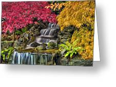 Japanese Laced Leaf Maple Trees In The Fall Greeting Card
