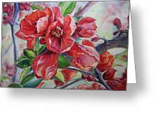 Japanese Quince In Blossom Greeting Card