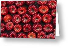 Japanese Wineberry Pattern Greeting Card