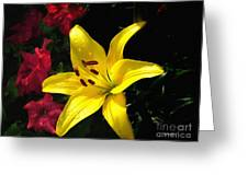 Jaune Et Rouge Greeting Card