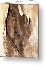 Javoricko Stalactite Cave Greeting Card