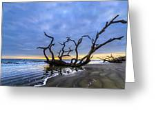 Jekyll Island Seascape Greeting Card