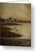 Jenkins Creek Dawn Greeting Card by Terry Rowe