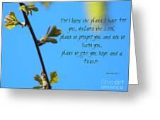Jeremiah 29 Greeting Card