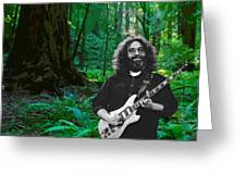 J G In Muir Woods Greeting Card