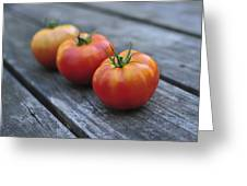 Jersey Tomatoes  Greeting Card