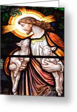 Jesus And Lambs Greeting Card