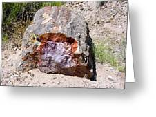 Jewel In Petrified Forest Greeting Card