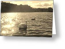 Jewels Of The Lake Greeting Card