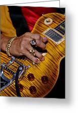 Joe Perry - Aerosmith Greeting Card by Don Olea