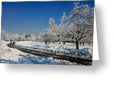 Jogger On Ice Greeting Card