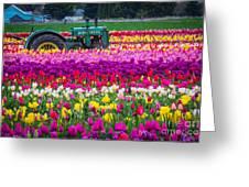 John Deere In Spring Greeting Card