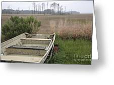 Jon Boat At Blackwater Wildlife Refuge Greeting Card