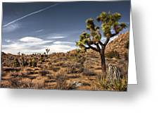 Joshua Tree 15 Greeting Card
