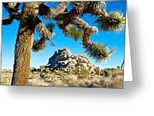 Joshua Tree And Jumbo Rocks By Quail Springs In Joshua Tree Np-ca Greeting Card