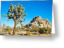 Joshua Tree And Jumbo Rocks Near Quail Spring In Joshua Tree Np-ca  Greeting Card